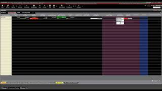 Trader Workstation TWS Basics -  Currency Conversion and Currency Trading (8)