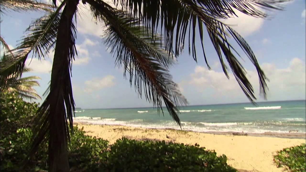 unspoiled beaches of vieques caribbean life hgtv asia - Caribbean Life