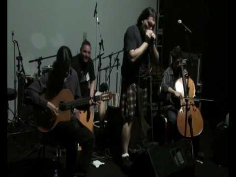 Harmonica - Rogues of Scotland - Kiaulles