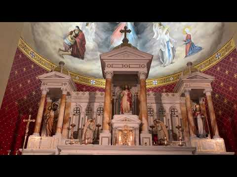 Angelus and Chaplet of Divine Mercy - Chapel of Divine Mercy (3/24/20)