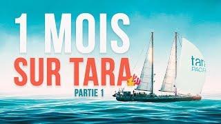A BORD DE TARA PACIFIC ! https://oceans.taraexpeditions.org -------...