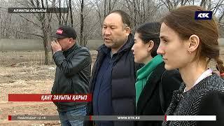 Алматы облысында қант қызылшасын өсірумен айналысатындар ақшасын ала алмай жүр