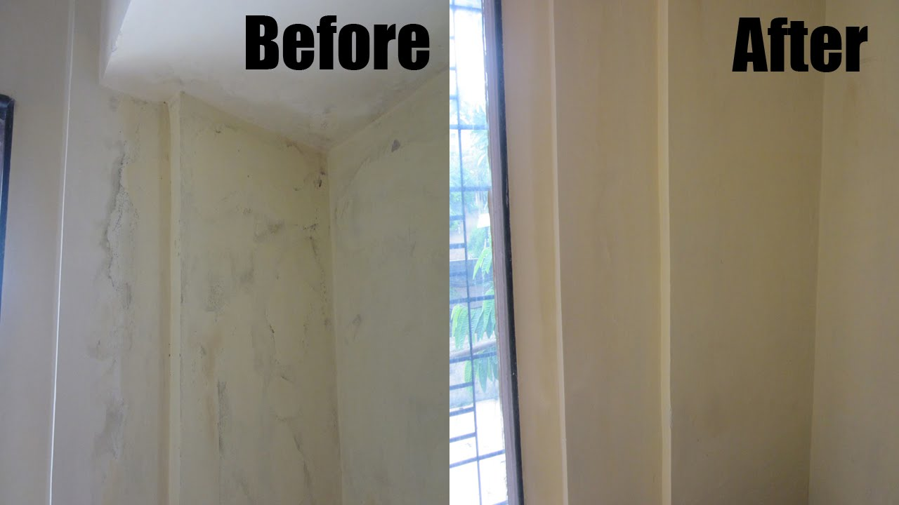 How to clean mould off walls and ceilings www for How to clean mold off walls in bathroom