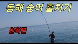 동해 숭어 훌치기 원척편 바다 낚시 포인트