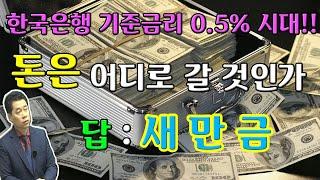 한국은행 기준금리 0.5% 시대!! 돈은 어디로 갈 것…