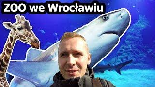 ZOO we Wrocławiu - Wycieczka z Przyczepą Kempingową (Vlog #102)