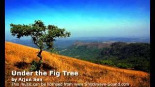 Royalty Free music: India / Middle East / Arjun Sen tracks #5