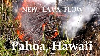 12/19/2014 -- New Hawaii lava flow set to hit Pahoa Marketplace -- Evacuations underway