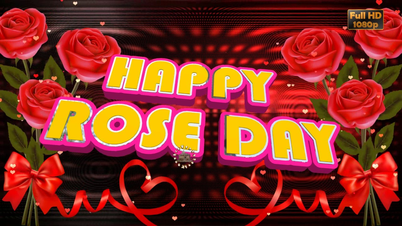 Happy Rose Day 2018,Wishes,Whatsapp Video,Greetings,Animation,Messages,Download,Rose  Day Quotes   YouTube