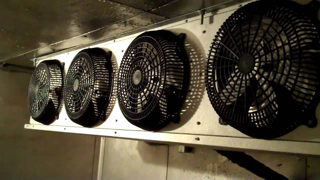 5 5hp Larkin Freezer Youtube