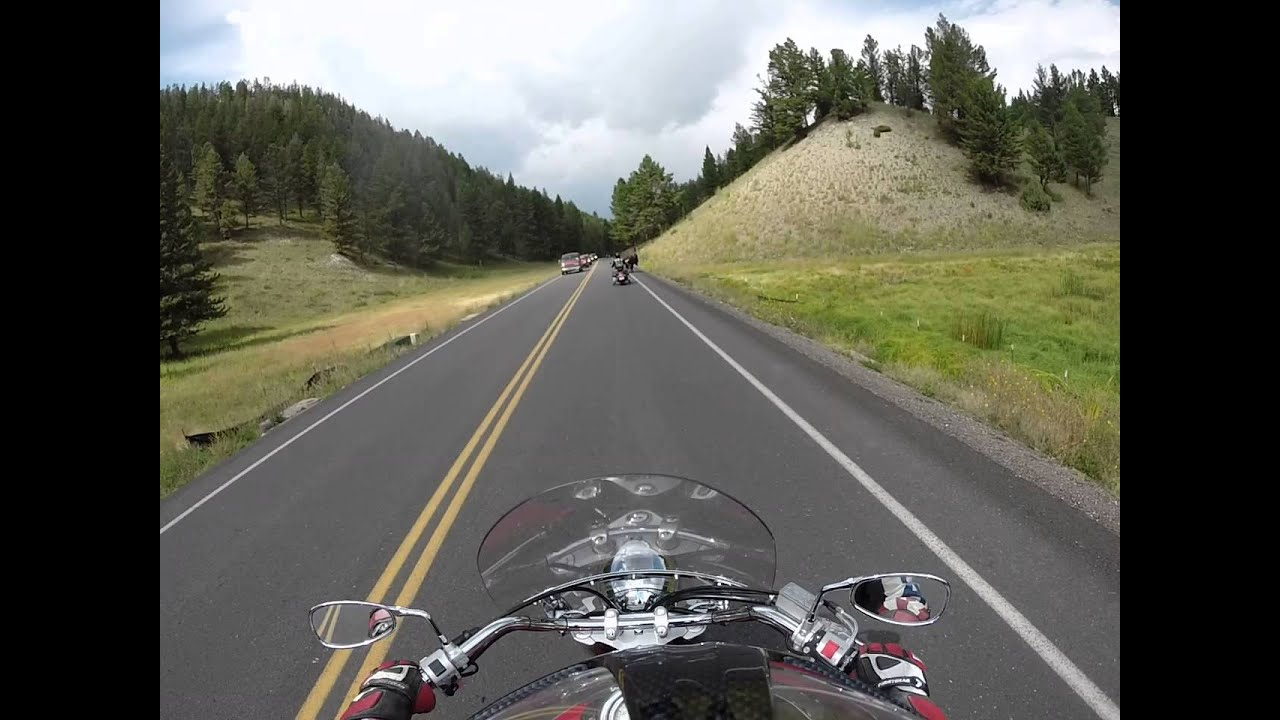 Bikers Vs Bison On Yellowstone Highway Youtube