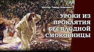 Уроки из проклятия бесплодной смоковницы. Марк. 11:20-26. Тимур Аничкин.