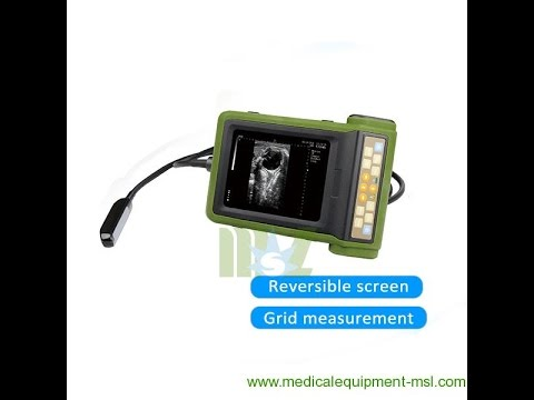 Portable Veterinary Reversible Screen Ultrasound Machine For Sale MSLVU19 Operating Video