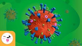 What Is A Virus?   Viruses For Children    Science For Kids