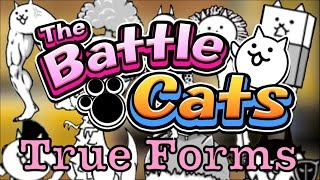 "How To Get ""Basic"" True Forms - The Battle Cats"