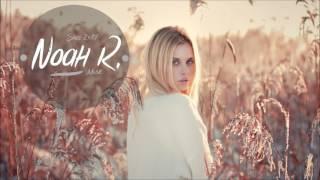 Hailee Steinfeld ft. Zedd - Starving Noah R. Remix