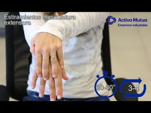 Ver en youtube el video Guía de Estiramientos para prevenir el dolor de espalda y extremidades en el trabajo.