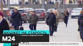 Россиянам раскроют размер их будущей пенсии - Москва 24