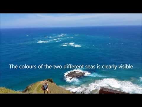 Glimpses of New Zealand - Northern Most Tip - Cape Reinga