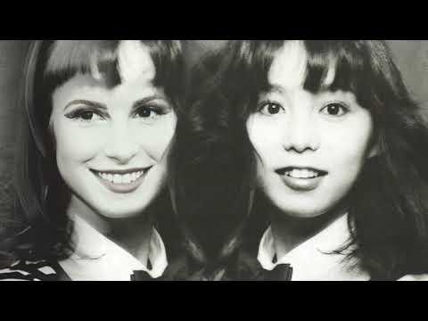 Ain't it Plastic (Paramore, Mariya Takeuchi) -  Mashup