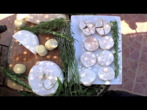 Un fromage bio 100% marocain