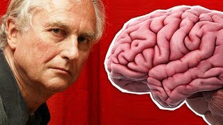 Is Religion a MIND VIRUS? | Richard Dawkins Vs Bret Weinstein