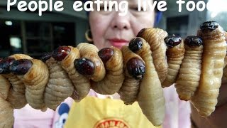 People eating live food compilation 2015