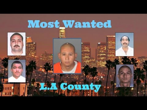 Most Wanted L.A County TOP 10