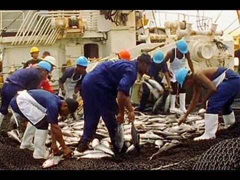 Tuna under threat off Papua New Guinea