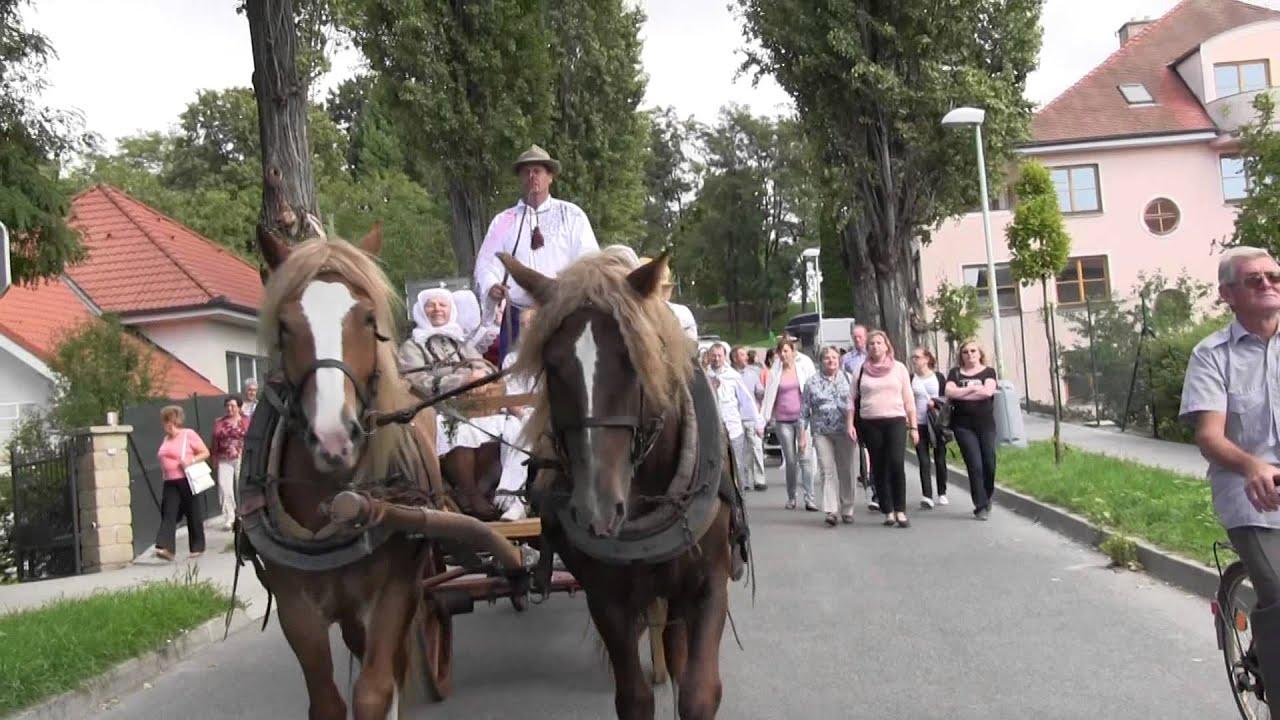 Download KYJOV-Krojované dožínky v královském městě:na cestě k radnici