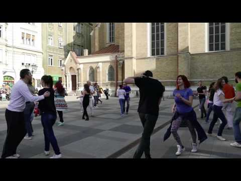 Rueda De Casino Flash Mob - Novi Sad, Serbia, 2016