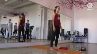 Йога для начинающих. Видео уроки. Семинар по хатха-йоге и медитации