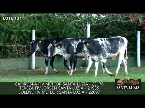 SANTA LUZIA   LOTE 121
