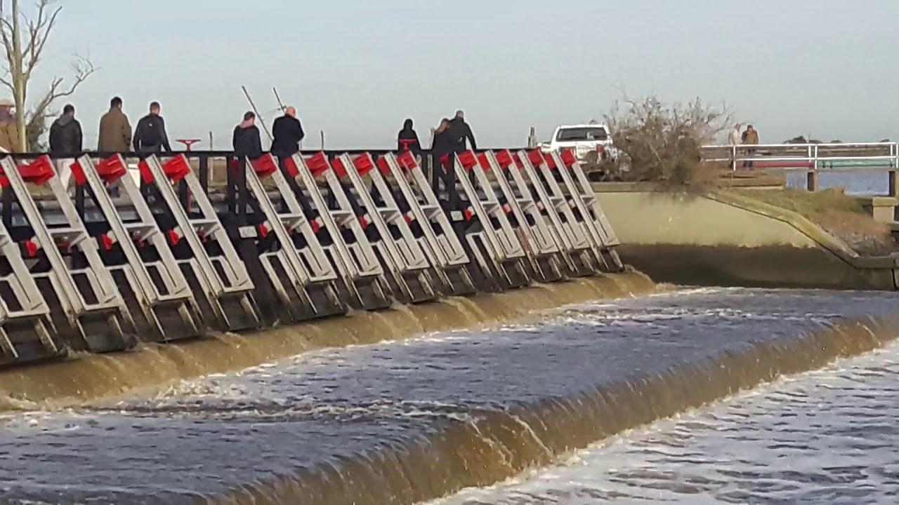 Resultado de imagen para holandeses en lavalle