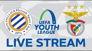 Montpellier vs. Benfica: UEFA Youth League LIVE!