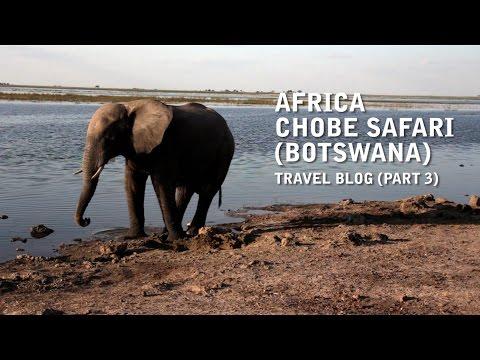 Africa - Chobe Safari (Botswana) Travel Vlog - Uncut (Part 3)