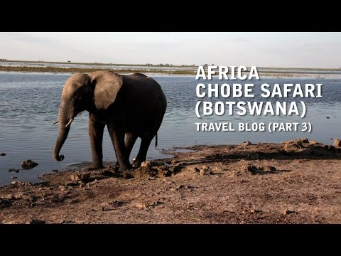 Africa - Chobe Safari (Botswana) Travel Vlog - Uncut (Part 3)