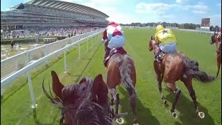 Ride a Royal Ascot winner for yourself aboard Berkshire Shadow!