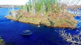 Bluff Wilderness Trail, near Halifax Nova Scotia - Complete ci…