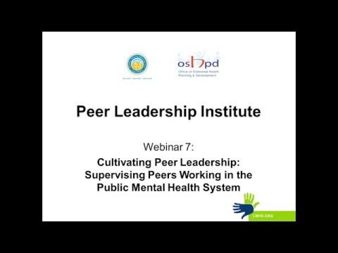 Peer Leadership Institute Webinar 7