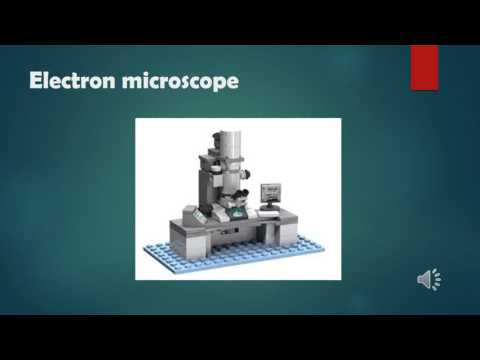 5 Important Types of Microscopes used in Biology