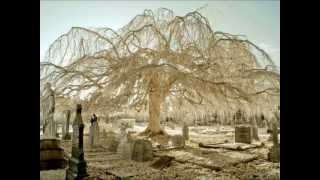 Empusae-Beauty Of Decay(Remix By Flint Glass)