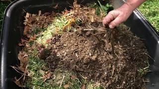 Gardening Jamberoo