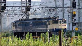 EF65-2091号機(国鉄色) 新鶴見信号場内単機回送