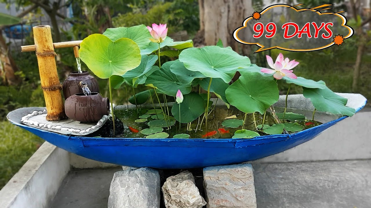 Recycle The Broken Boat Into A Waterfall Aquarium and Plant Beautiful lotus