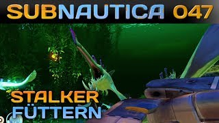 🌊 SUBNAUTICA [047] [Stalker Fütterungszeit!] Let's Play Gameplay Deutsch German thumbnail