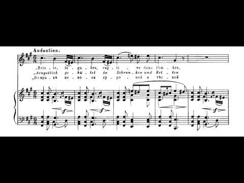 Modest Mussorgsky - Songs and Dances of Death for Soprano and Piano (1870's) [Score-Video]