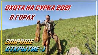 ОХОТА НА СУРКА 2021 УТОПИЛИ 3 ДЖИПА Горная охота на сурка Открытие охоты 2021 года в Казахстане