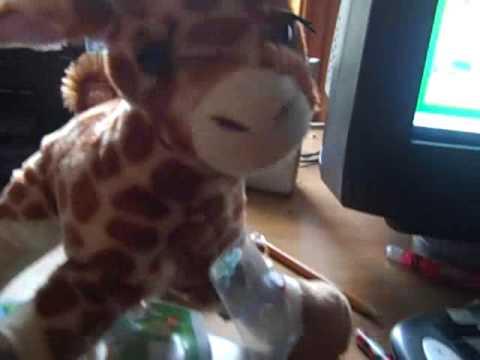 Adopting My Webkinz Giraffe