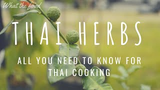 How to cook Thai food with Thai Herbs - 泰國香草(中文字幕) สมุนไพร #Whatthefood